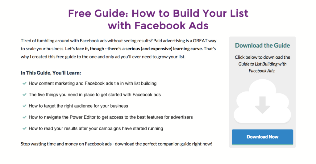 Landing Page for Facebook Ads